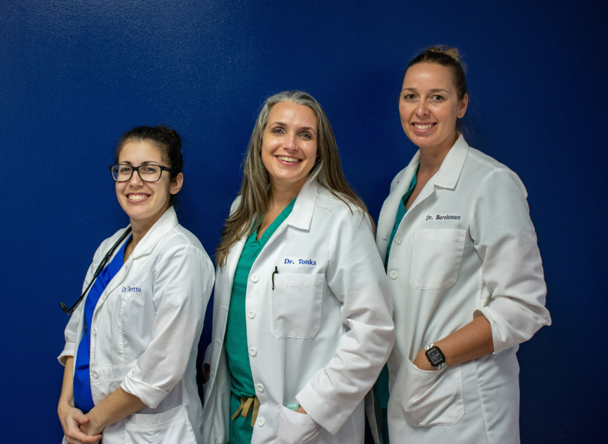 Dog and Kitten laying in a field